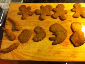 Yup, those are sperms and the monthly growth of a fetus (a la gingerbread).
